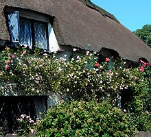 OLDE WORLDE DEVON COTTAGE by rodsfotos