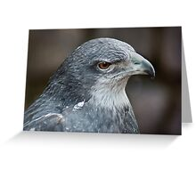 410 g eagle in standing Greeting Card