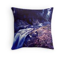 Honey Hollow 4, Bolton, Vermont Throw Pillow