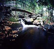 Abbey Brook 2, East Middlebury, Vermont by HagstarStudios