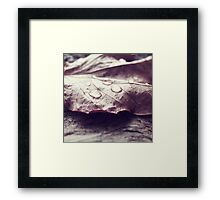 Autumn sweetness Framed Print