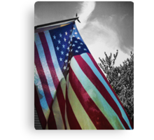 Home of the Free Canvas Print