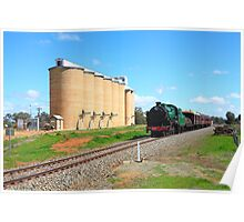 3642 at Old Junee Silos Poster