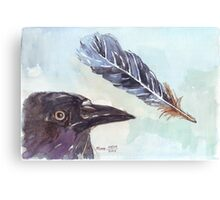A Crow's Wing Feather Canvas Print