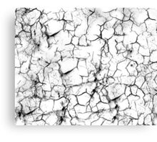 Broken Glass Canvas Print