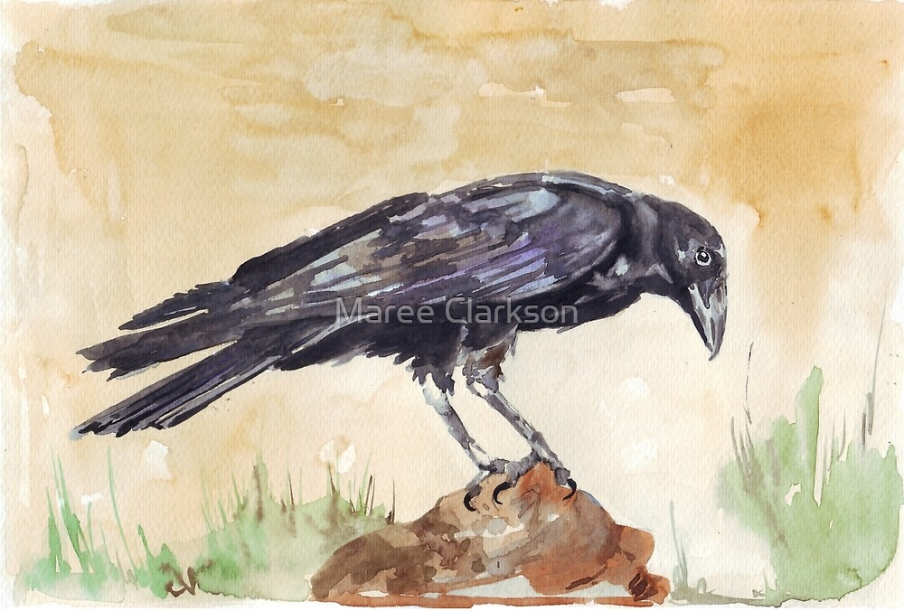 The Way of the Crow by Maree Clarkson