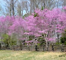 Spring On The Natchez Trace Parkway by GaryCole