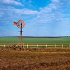 Windmill at Penong by Ian Fegent