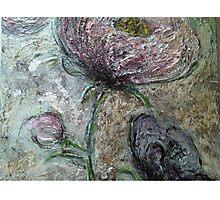 Peony Roses Photographic Print