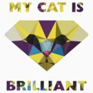 My cat is brilliant by ethnographics