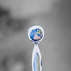 world in a drop by canebisca