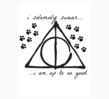 i solemnly swear i am up to no good by BaileyLisa