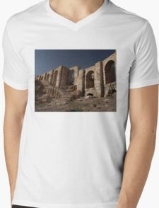 Gladiator Set Mens V-Neck T-Shirt
