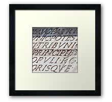 Graphic carved serif type Framed Print