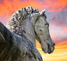 Noble Horse Strong Sky by dovelupo