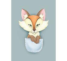 Pocket Fox Photographic Print