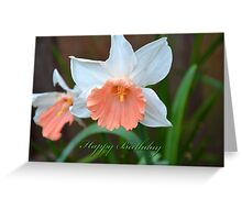 Daffodul Happy Birthday Card Greeting Card
