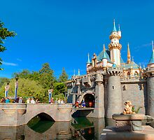Fantasyland Castle by Ron LaFond