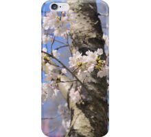 Cherry Tree iPhone Case/Skin