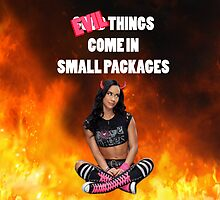 AJ Lee - Small Packages by JGManRulz