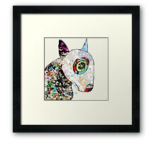 bull terrier modern  Framed Print