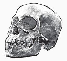 Skully by Tilp