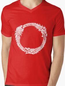 The Three Alliances Mens V-Neck T-Shirt