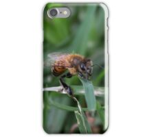 Wounded Bee in the Grass iPhone Case/Skin