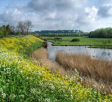 Spring in Holland by Thea 65