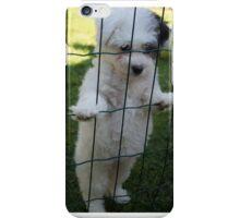 Poppy-dog iPhone Case/Skin