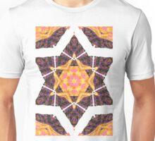 Mandalas 13 Unisex T-Shirt
