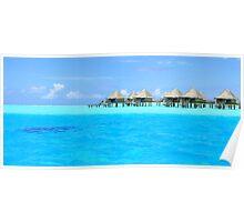 Bora Bora blues and coral reefs Poster