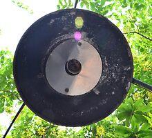 Iron Circle by fotosvn