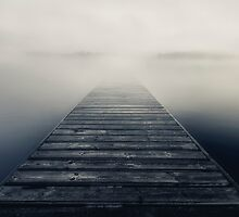 Disappear by Mikko Lagerstedt