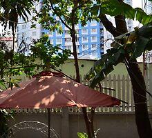 Garden in city by fotosvn