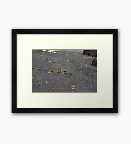 Flower Drop Framed Print
