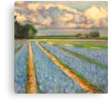 Flower Fields Landscape Painting Picture 3 of 3 Canvas Print