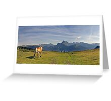 horse on alps Greeting Card