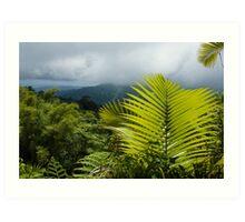Tropical Rainforest - Jungle Green and Rain Clouds Art Print