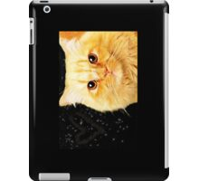 Ginger Cat Love iPad Case/Skin