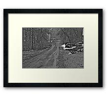 4/13/14b Framed Print