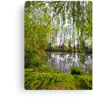 Through the Willow Trees Canvas Print