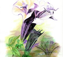 Double Lavender Angel Trumpets by Linda Ginn Art
