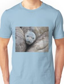 Northern Elephant Seal Pup Resting Unisex T-Shirt