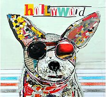 hollywood chihuahua  by bri-b