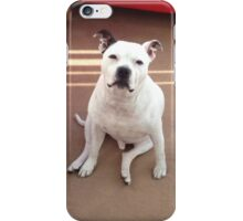 Staffordshire Bull Terrier iPhone Case/Skin
