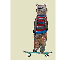 the cat skate  Photographic Print