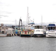 House Boats in Seattle by melodywatson