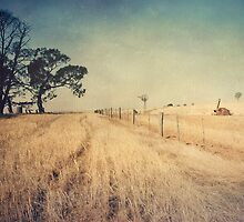 Willowmavin #8 by Tracy Edgar