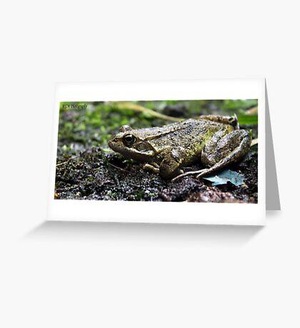 Urbex Frog Greeting Card